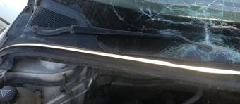 2004 model peugeot 307 1.4 hdi çıkma ön cam ızgarası